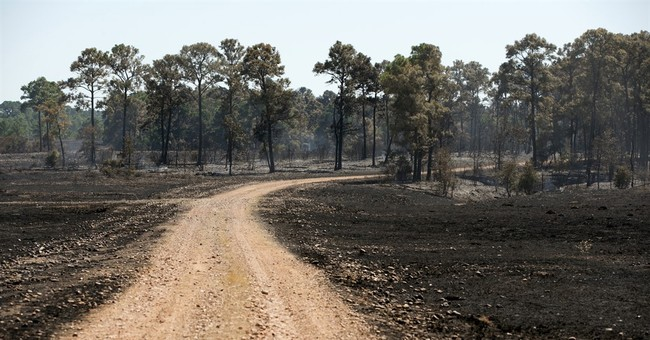 Officials believe farming accident sparked Texas wildfire
