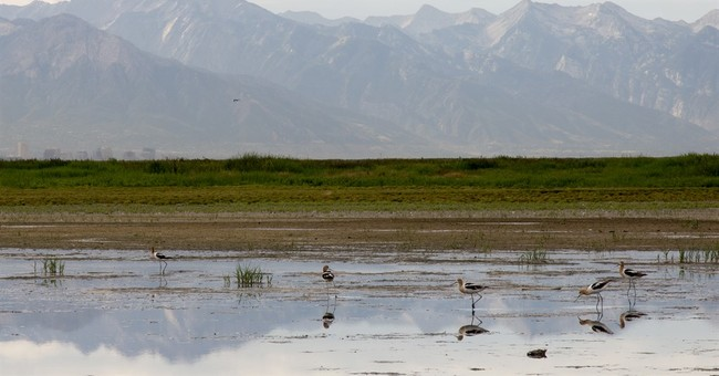Researchers: Don't blame the Great Salt Lake for bad smell
