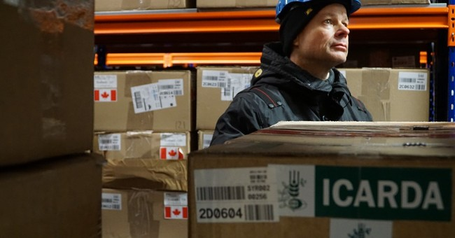 Syrian seeds withdrawn from Arctic 'doomsday vault'