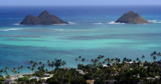 Officials: Eel, not shark, might have attacked Hawaii surfer