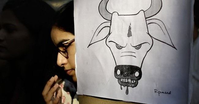 Investigators call Indian mob killing over beef premeditated