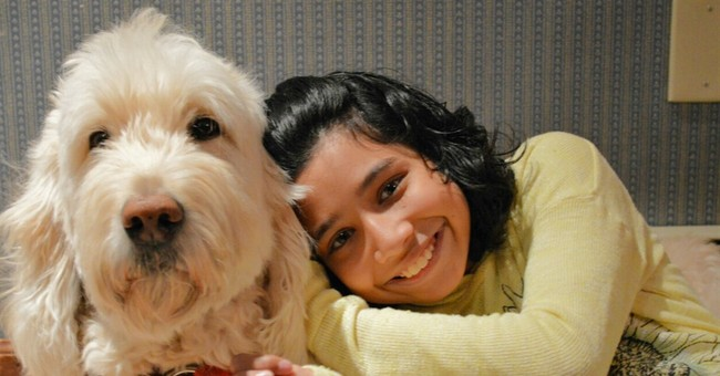 Girl with service dog wants US Supreme Court to take case