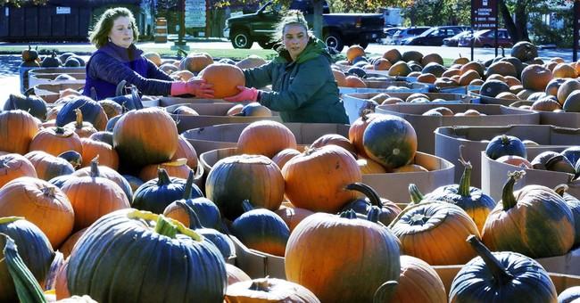 Pumpkin festival falls far short of jack-o-lantern record