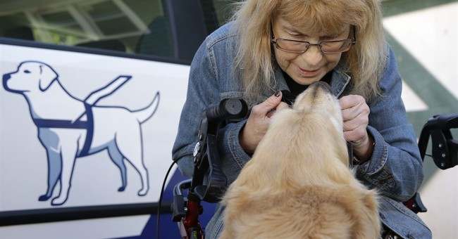 AP Exclusive: Woman reunites with guide dog that saved her