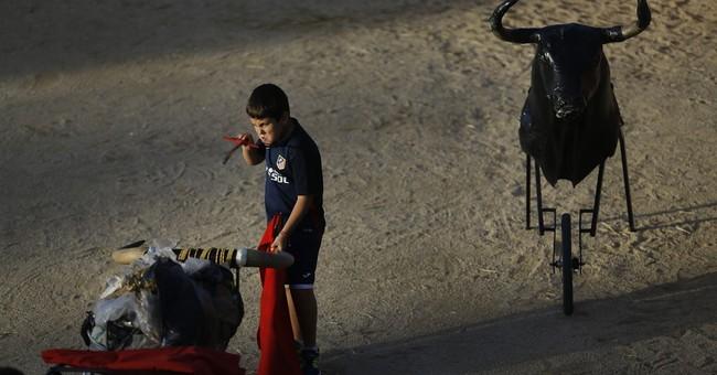EU lawmakers vote against using farm aid for bullfighting