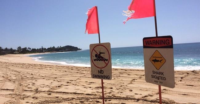 Hawaii officials: Boy's shark bite added to database