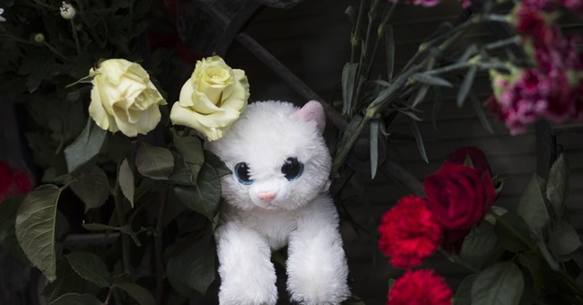 Toddler in airport window encapsulates Russia plane tragedy