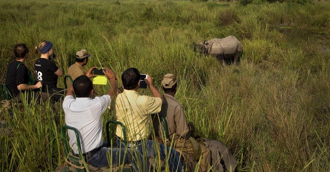 Image of Asia: Seeing India's wild side