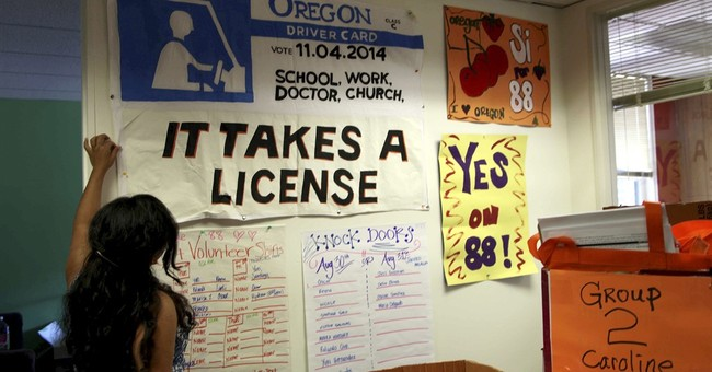 Lawsuit aims to reinstate driver cards law dumped by voters