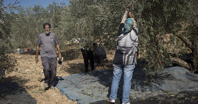 Attack on Israeli rabbi part of unchecked settler violence