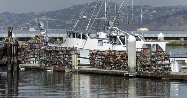 High toxin level delays California recreational crab season