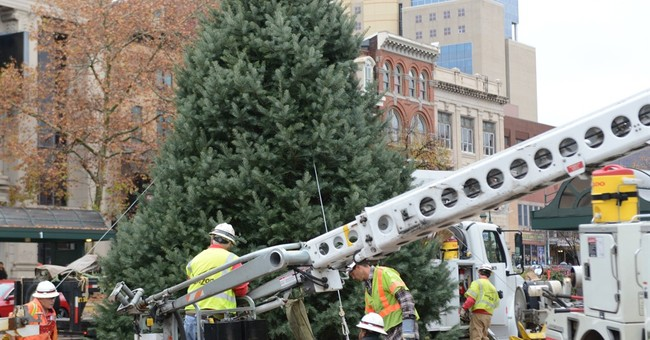 This Christmas, city won't stand for 'Charlie Brown' tree