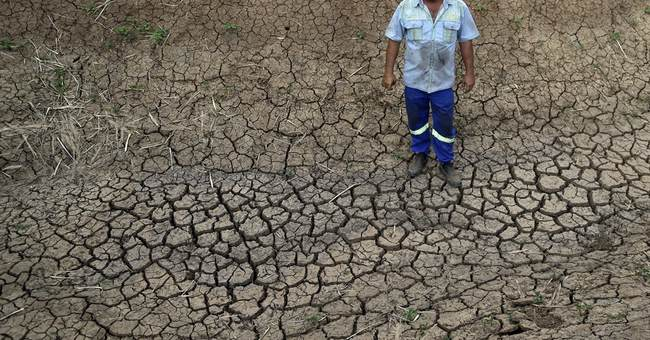 South African farmers faces losses as drought worsens