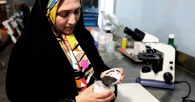 Iran seeks revival of caviar industry in post-sanctions era