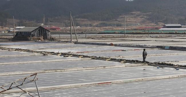 South Koreans sue government over salt farm slavery
