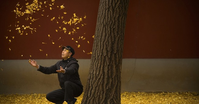 Image of Asia: Tossing leaves in the park on an autumn day