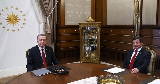 Turkey's new government includes Erdogan son-in-law