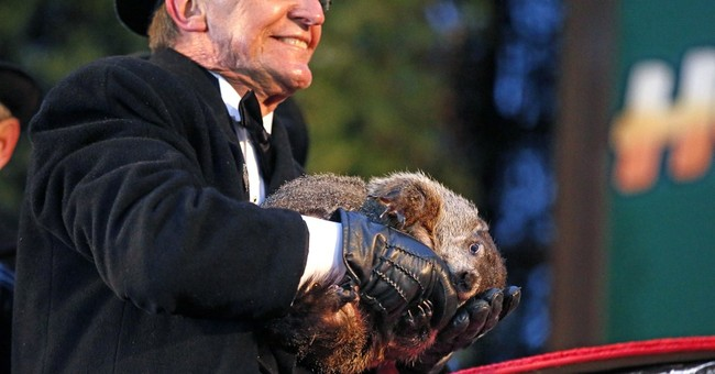 Pennsylvania groundhog 'forecasts' 6 more weeks of winter