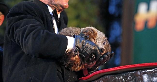 Pennsylvania groundhog 'forecasts' 6 more weeks of winter