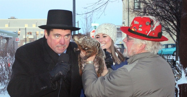 Groundhog bites Wisconsin mayor's ear during ceremony