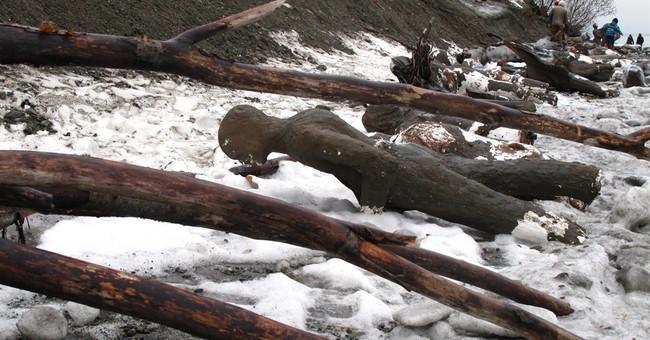 Artists plan to rebuild Alaska art display damaged by tides
