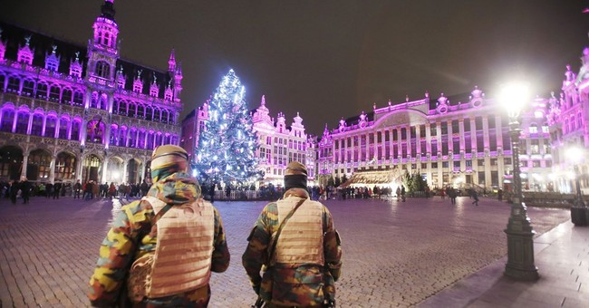 Cats used as bait to lure tourists back to Brussels