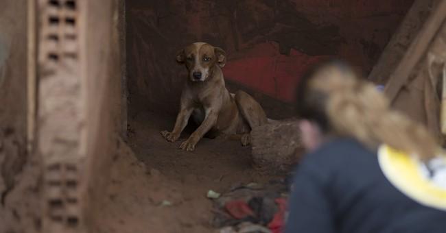 AP PHOTOS: Brazil mine disaster leaves swath of destruction
