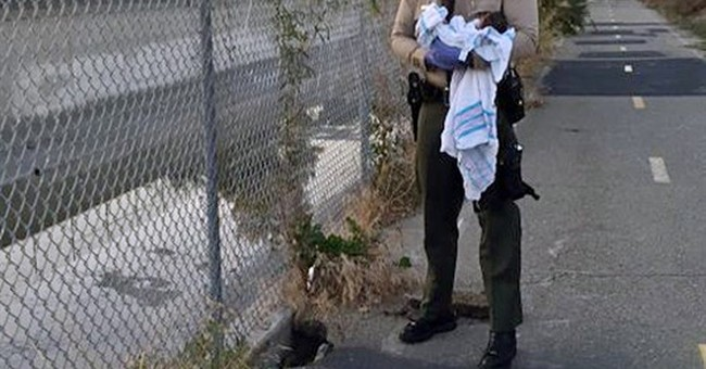 Los Angeles deputy describes rescuing newborn buried alive