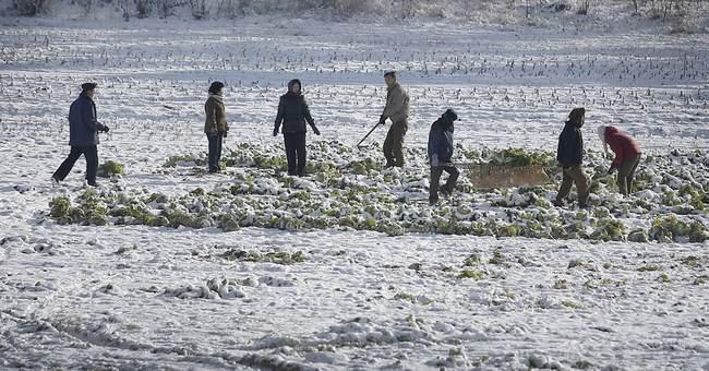 North Korea hunkers down for harsh winter