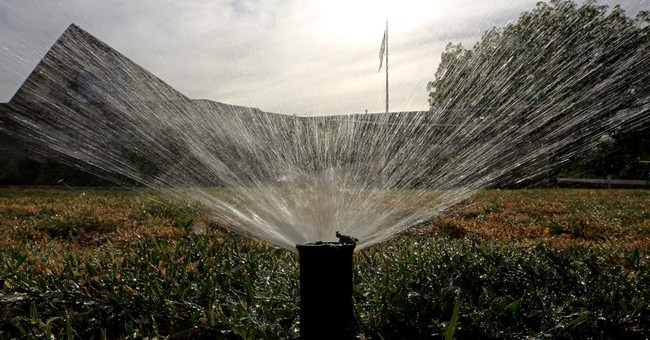 Californians use 22 percent less water, but more cuts loom