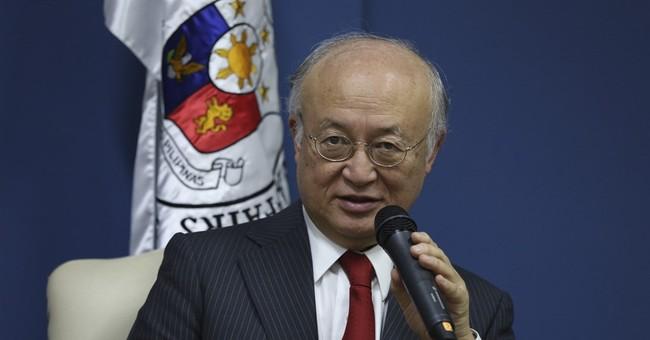 IAEA chief: Interest in nuclear power up despite Fukushima