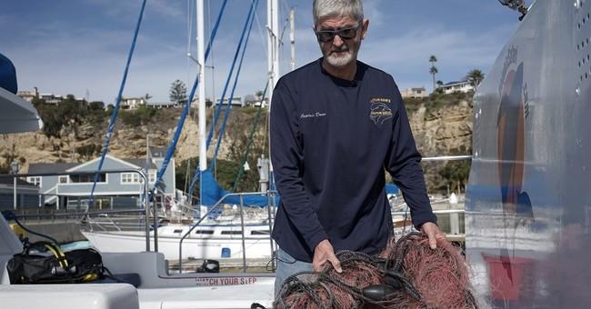 Whales entangled at alarming rate along California coast