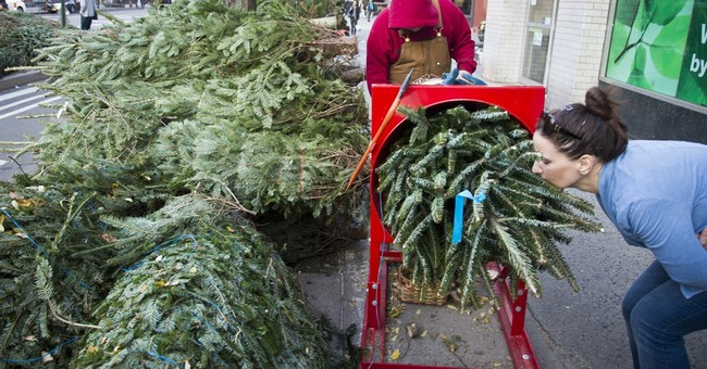 Peddlers flock to New York City for 'coniferous tree' season