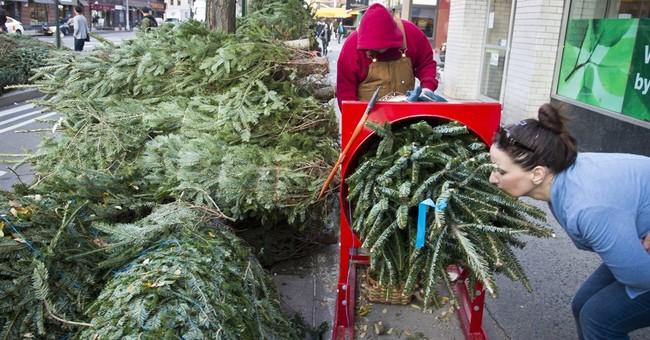 Peddlers flock to New York City for 'coniferous tree' season