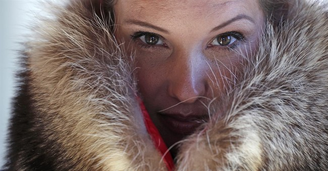 'Accidental fur': Boston company turns roadkill into fashion