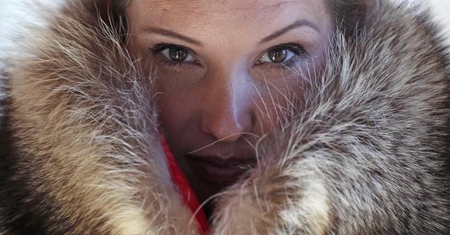 'Accidental fur': Boston company turns roadkill into fashion