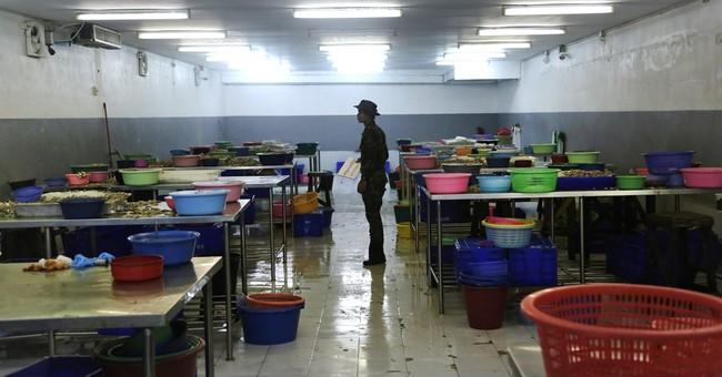 AP: Global supermarkets selling shrimp peeled by slaves