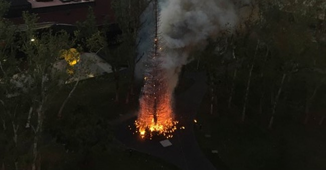 Christmas tree goes up in flames outside California hotel