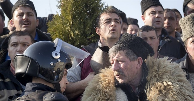 Romania: government removes sheepdog restrictions