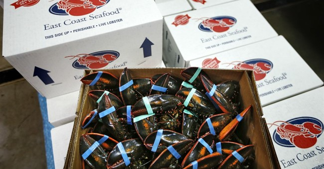 US lobster exports to Europe are down for Christmas season