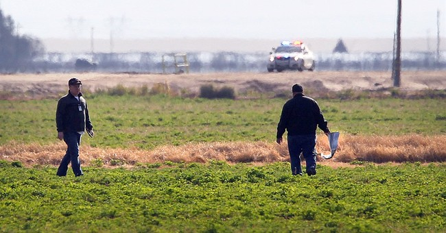5 bodies found in plane wreckage in California orchard