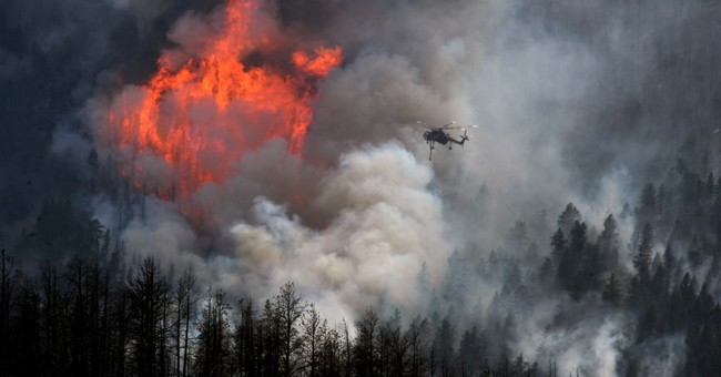 Colorado to test new wildfire prediction system next year