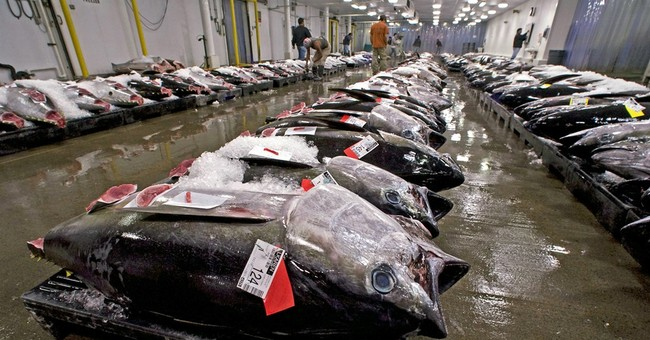 Judge upholds rule allowing more Hawaii bigeye tuna fishing