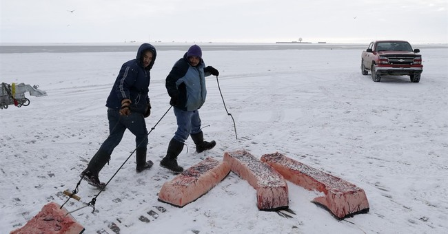 Alaska's Inuit link steady food supply to environment health