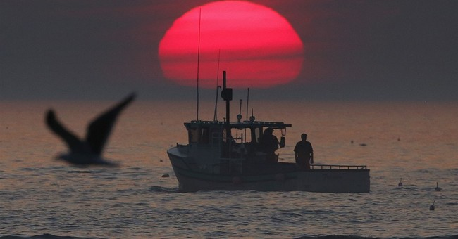 New England lobstermen still fishing thanks to mild winter