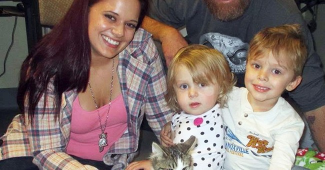 Family of 2-year-old amputee adopts kitten that lost a limb