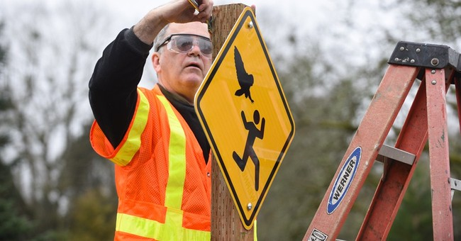 It's no hoot: Oregon city to post signs about attacking owl