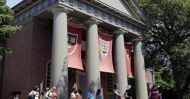 Harvard grads lead IPO class of 2014