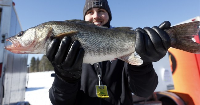 Ice fishing contests add allure to popular winter sport