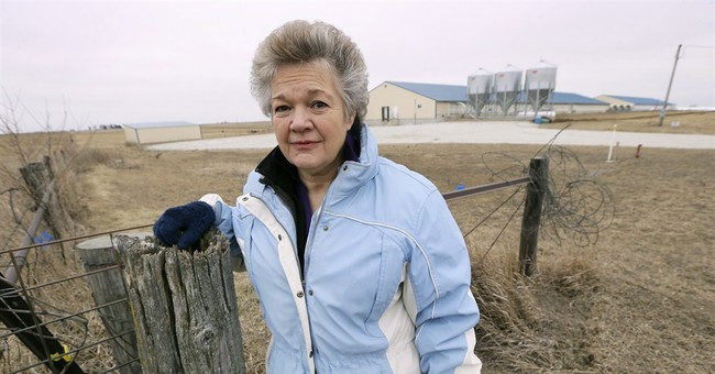 Water, air quality concerns heighten conflict with pig farms